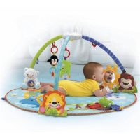 fisher price playgym12